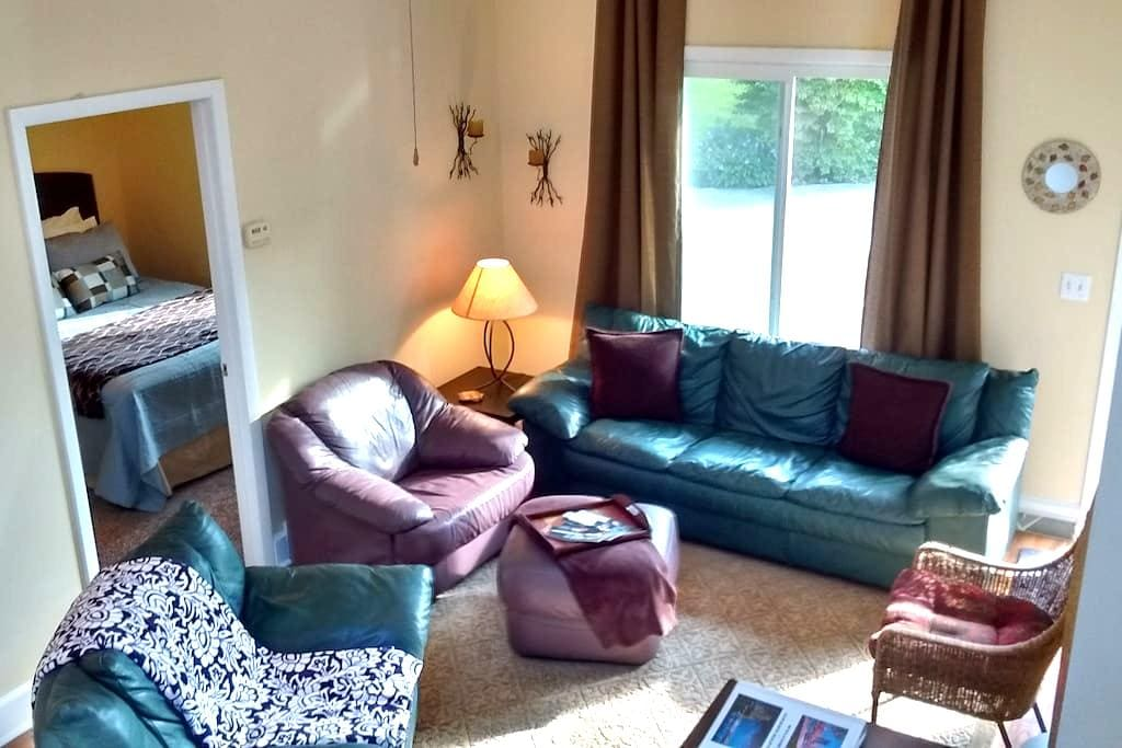 2 Bedroom Apartment Near Downtown GR - Grand Rapids - Apartment