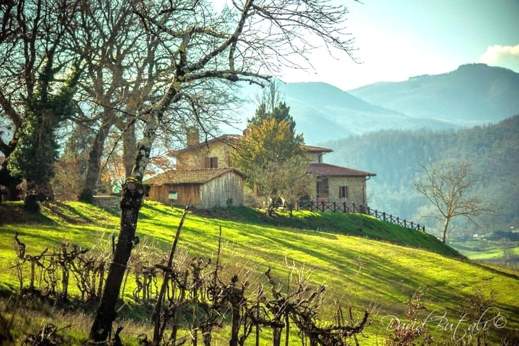 Poggio di Dante zona Camaldoli - Poppi