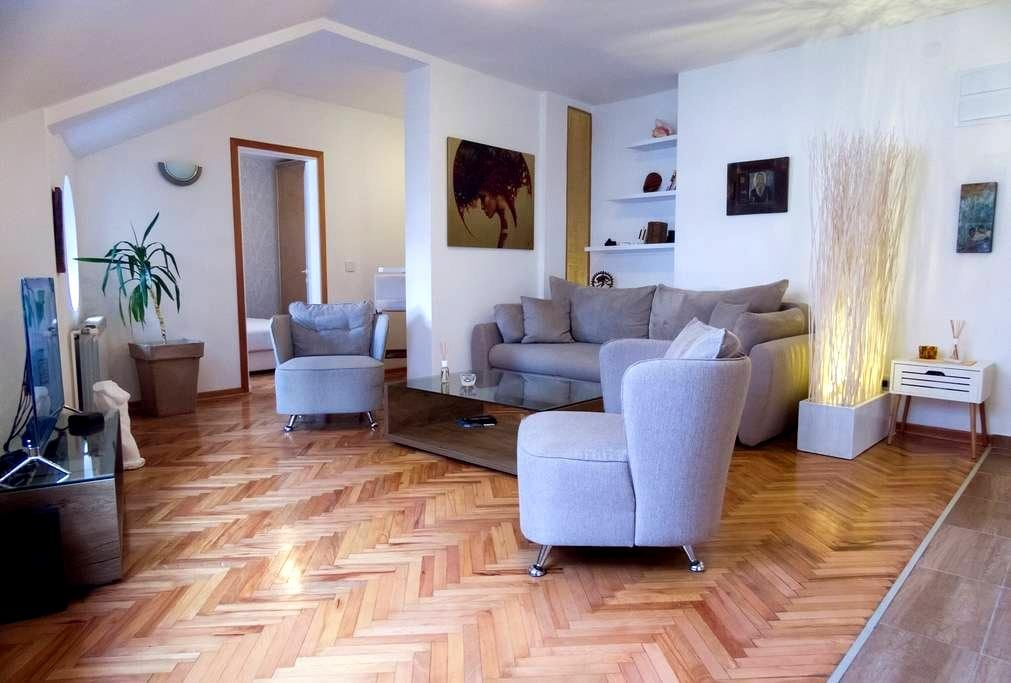 Amazing 1 bedroom in center of city - Niš - Apartment
