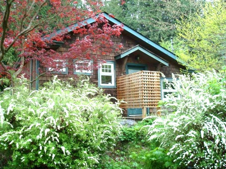 East Creek Studio - Roberts Creek - Cabana