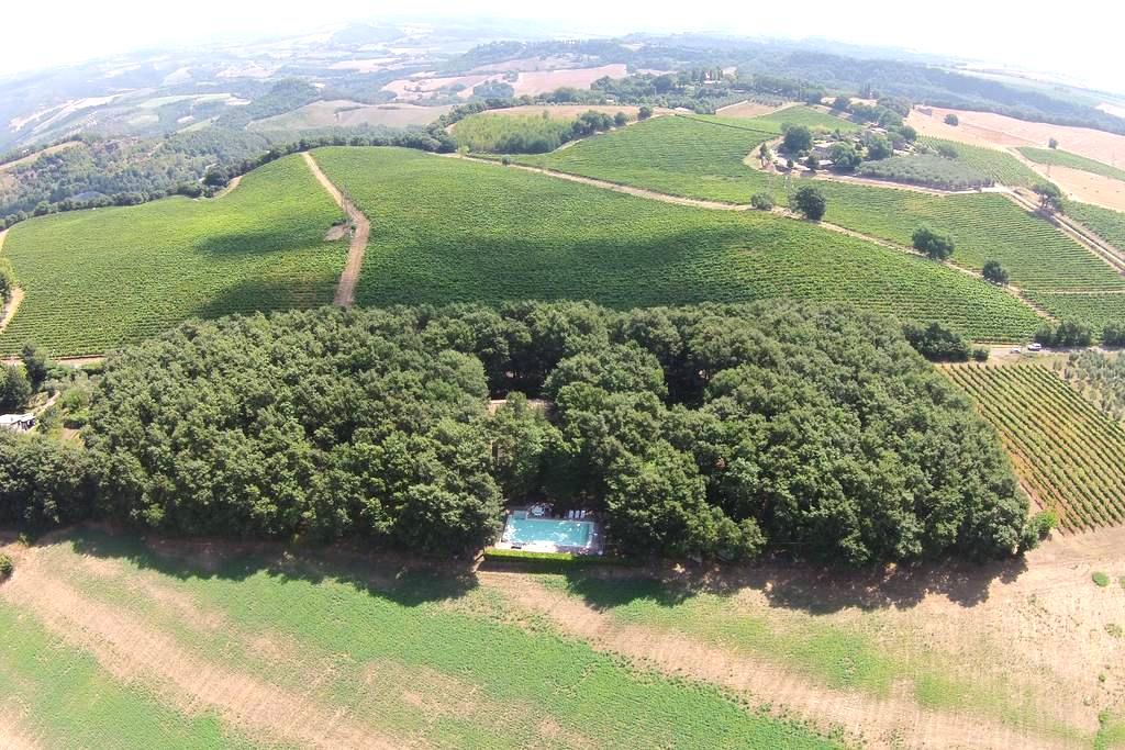 LARGE LUXURY COUNTRY VILLA W/POOL - Canale Nuovo