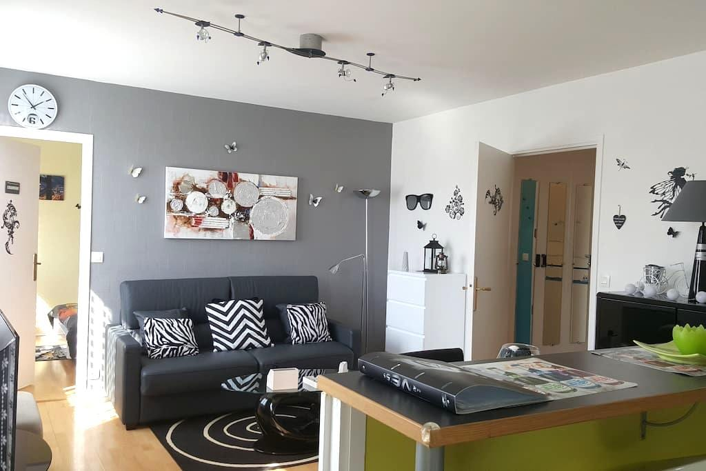 T2 walk to shops, transport - Lille - Apartamento