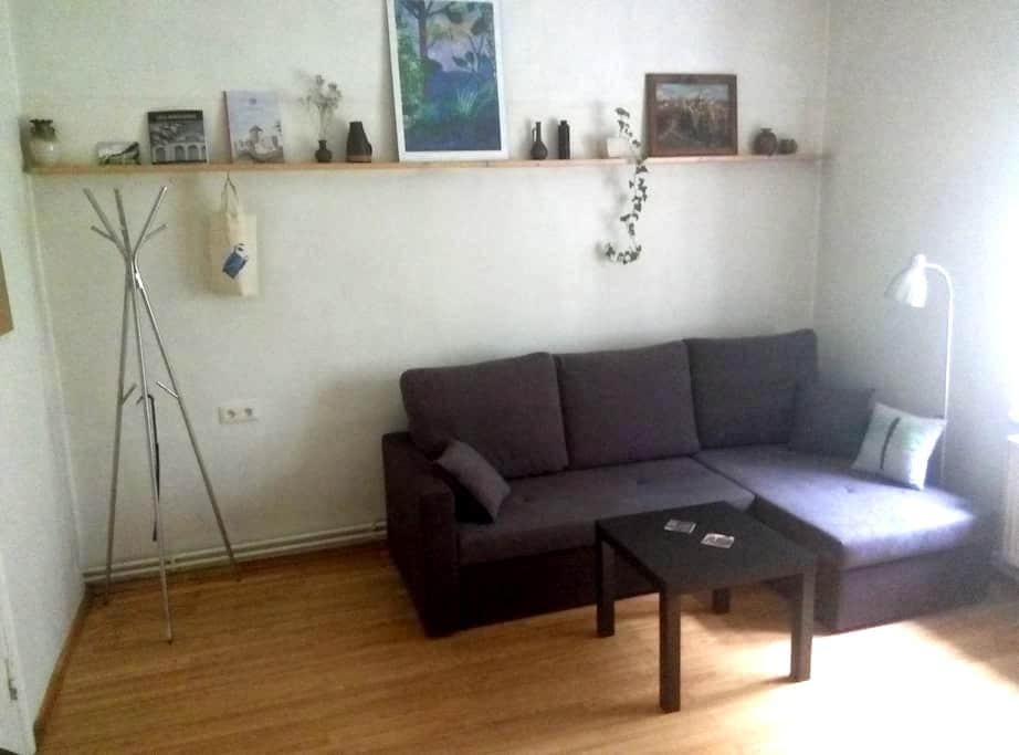 Nice apartment with kitchen in Cesis Old town - Cēsis - Leilighet