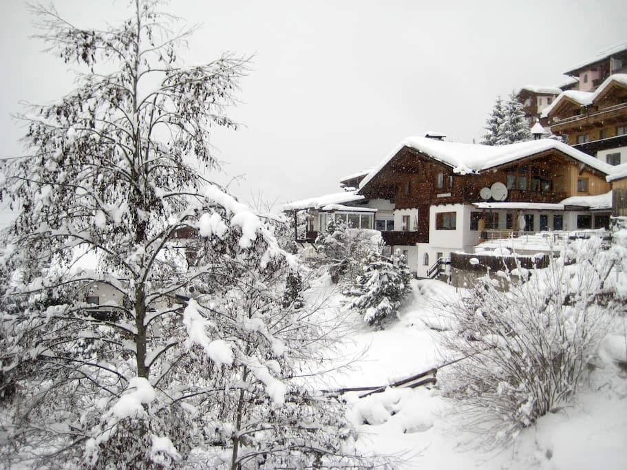 Diane Blaschek - Apart Zillergrund - Ramsau - Apartment