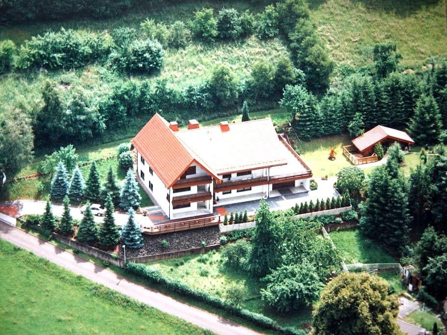 Ferienwohnung Sonnenblick (EG) 90 qm - Heringen (Werra) - Wohnung