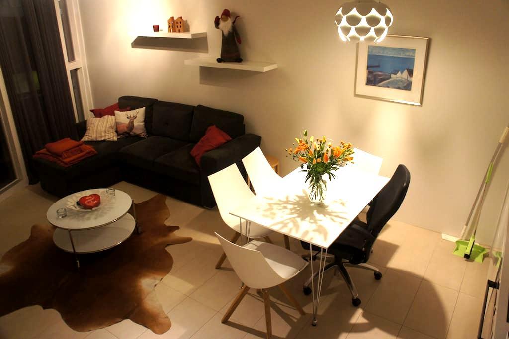 A modern apartment, great location - Reykjavík - Apartment