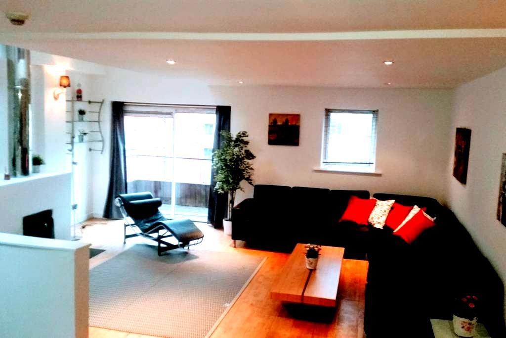 Large Loft apartment close to Grafton Street - Dublin - Loft