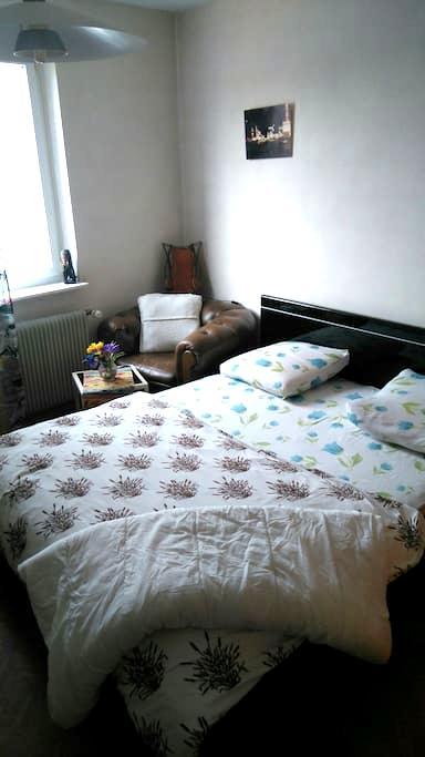 Belle chambre propre près de tout - Ottmarsheim - Hus