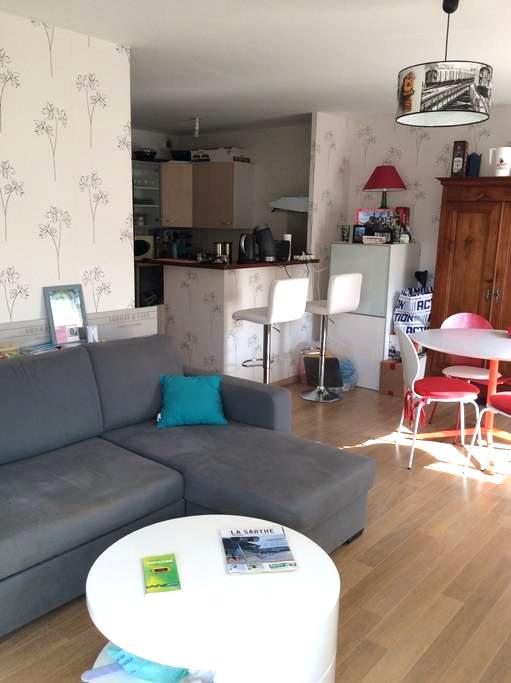 Bel Appartement idéalement situé - Le Mans