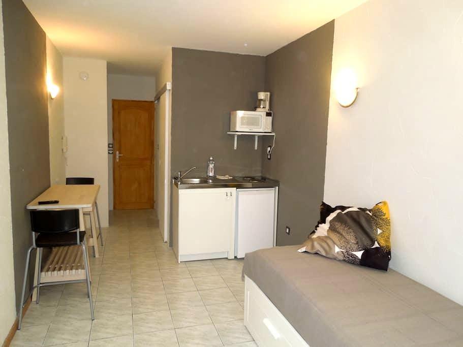 STUDIO EQUIPE HYPER CENTRE LE PUY-EN-VELAY - Le Puy-en-Velay - Apartment