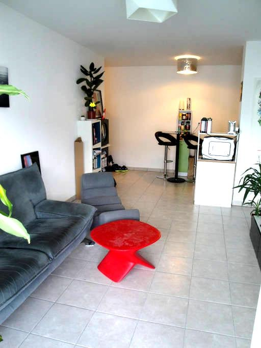 Agréable T2 proche Annecy + Petit Déjeuner - Epagny - Apartament