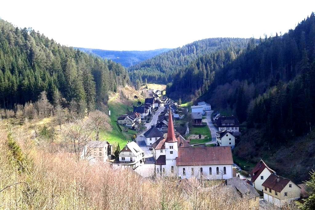 Cosy holiday home in the heart of the Black Forest - Triberg - Wohnung
