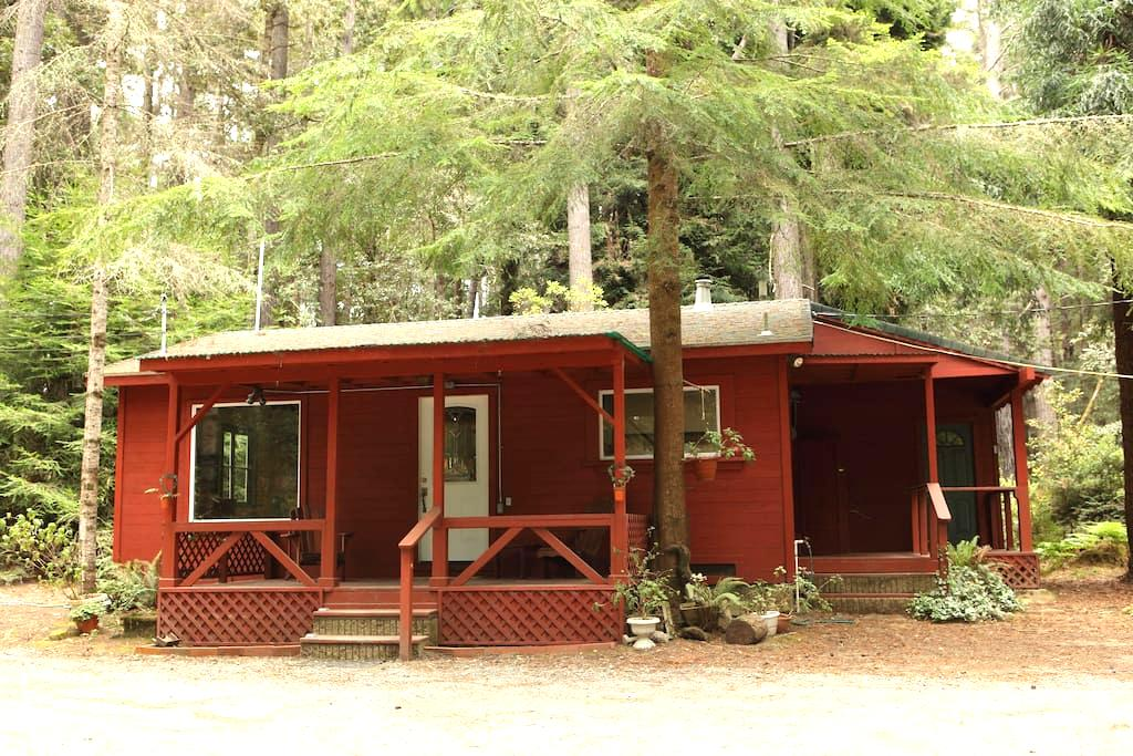 Kona Cabin in the Redwoods - Fort Bragg - House
