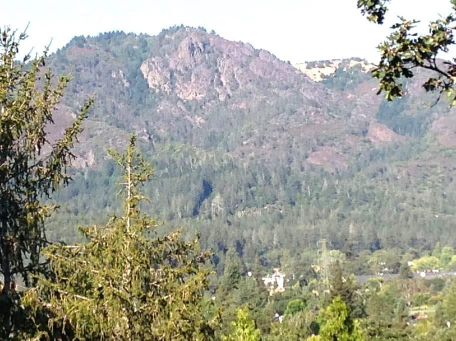 Peaceful Sonoma County Refuge - Santa Rosa