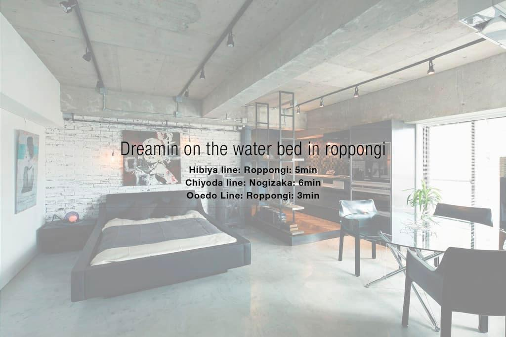 Dreamin on the Water bed In Roppongi - Minato-ku - Leilighet