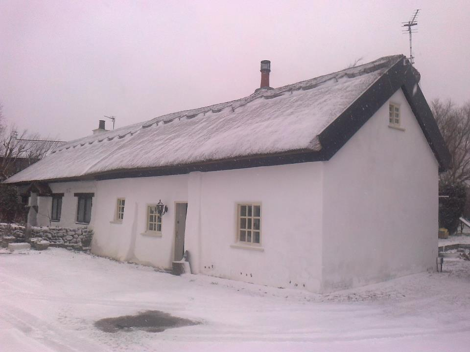 Willow Cottage in snow