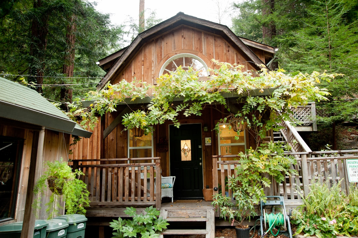 Quiet Cabin in the Redwoods,