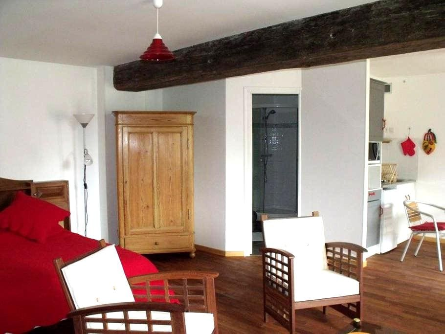 Gite studio ** 40m2 2-3 pers  - Saint-Martin-du-Fouilloux - Maison