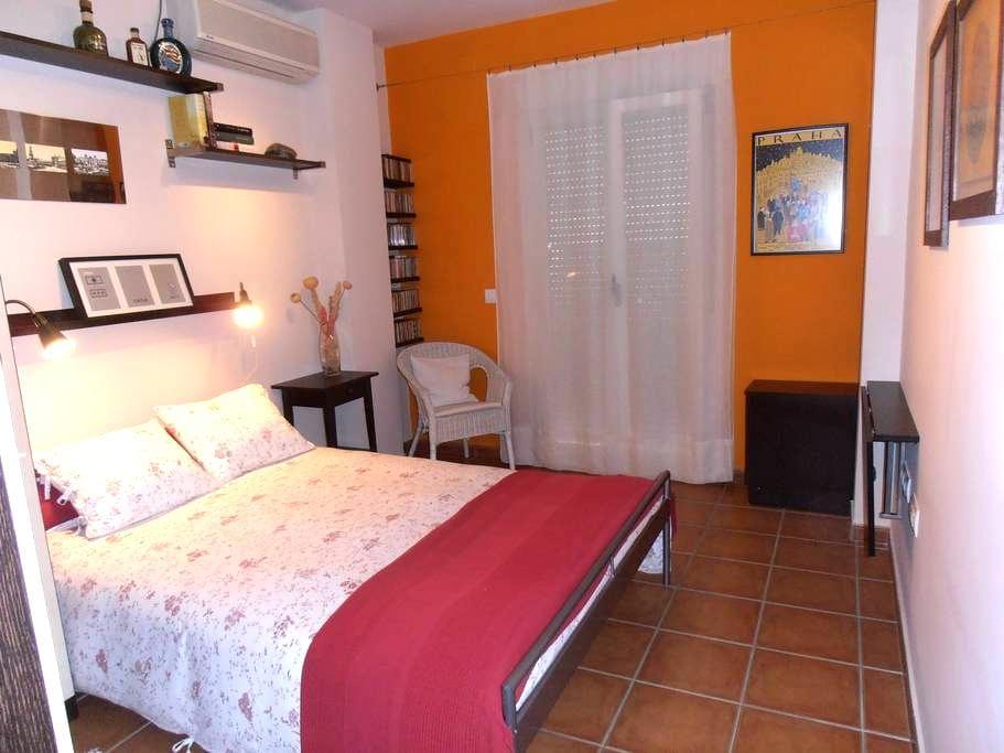 Casa sevillana en barrio historico - Sevilla - House