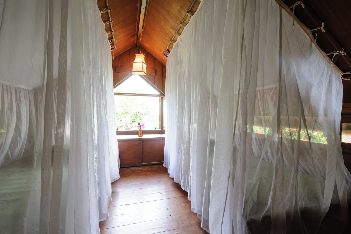 Mosquito-net down on the twin beds