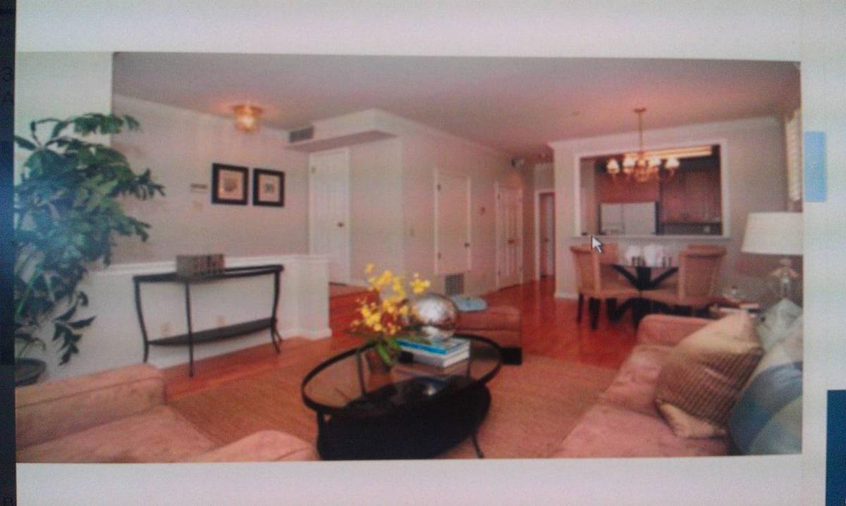 Spacious sunny living room with hardwood floor