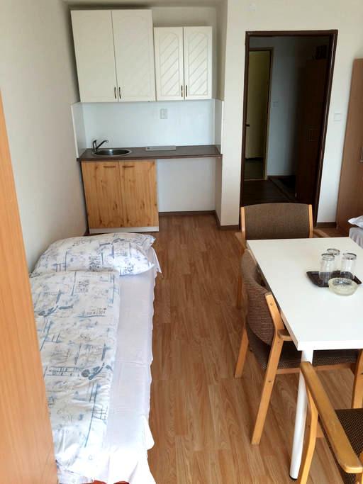 Slušný pokoj po rekonstrukci - Frýdek-Místek - Appartamento