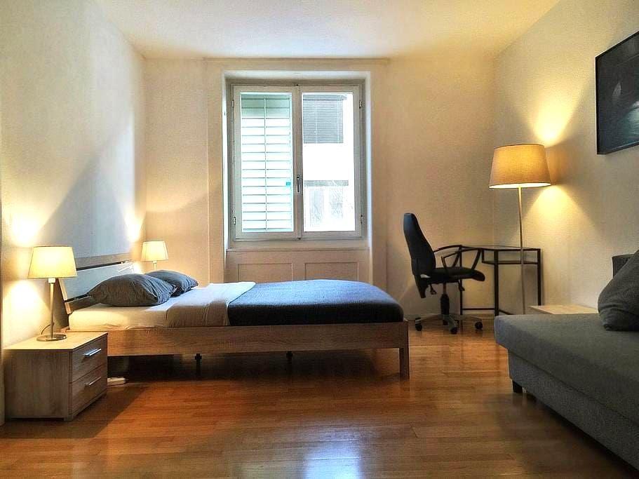 Gemütliche 3-Zimmerwohnung  und 2 Balkonen - Zurique - Apartamento
