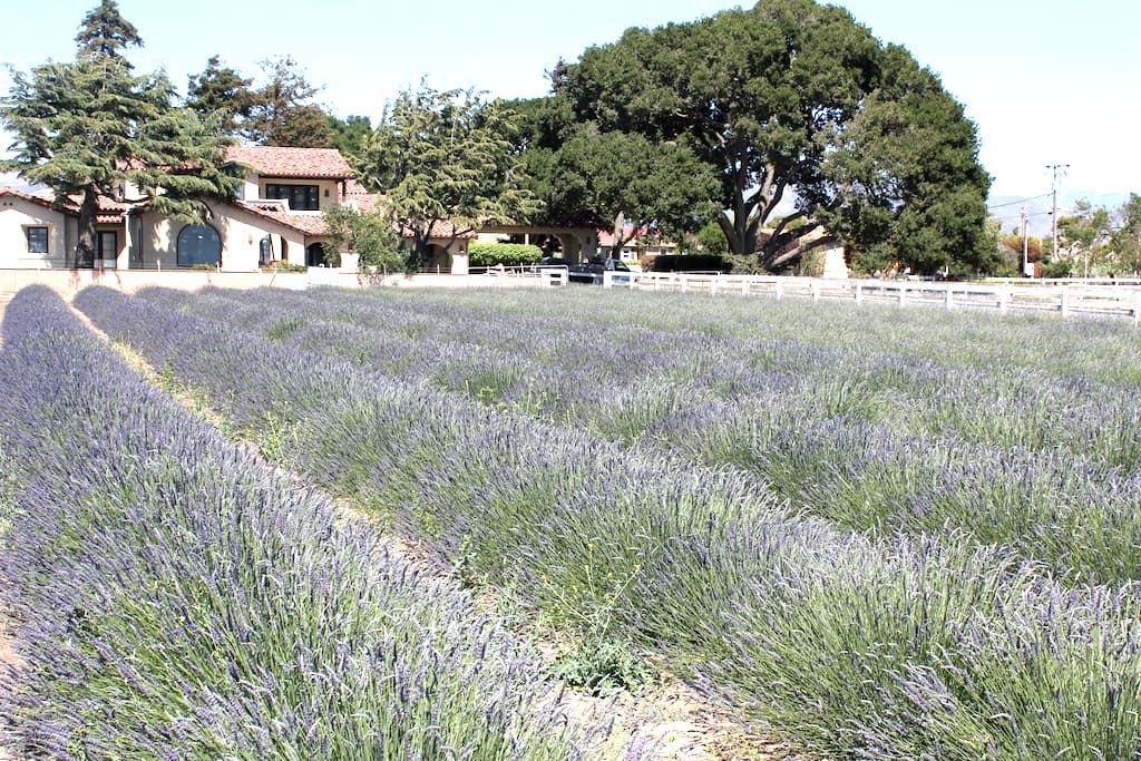 The Mortensen Ranch - Salinas - Casa