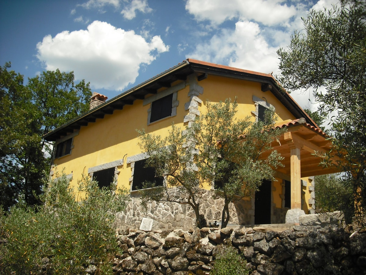 Cottage among olive trees and oaks