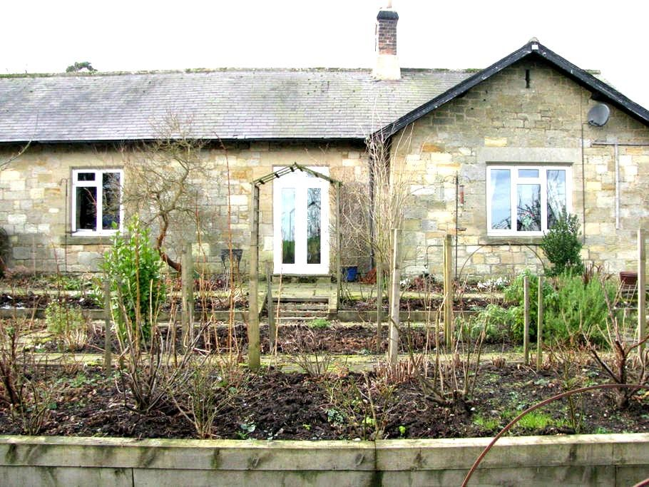 B&B Morwick, Northumberland (for 1) - Acklington - Bed & Breakfast