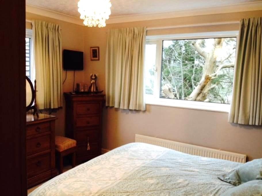 Double bedroom in family home. - Plymouth - Bed & Breakfast