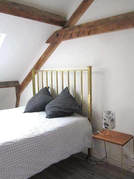 Jolie chambre 20m2 maison de charme - Rennes - Hus