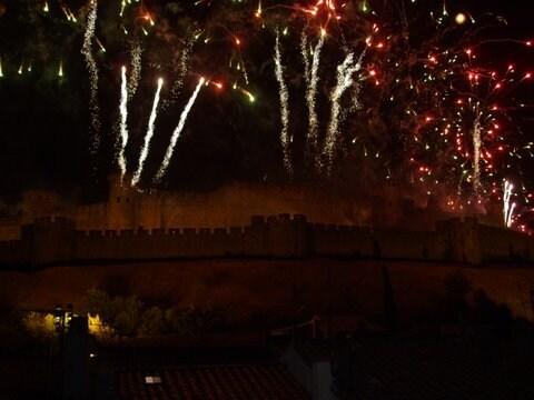 feu d'artifice du 14 juillet vu de la terrasse