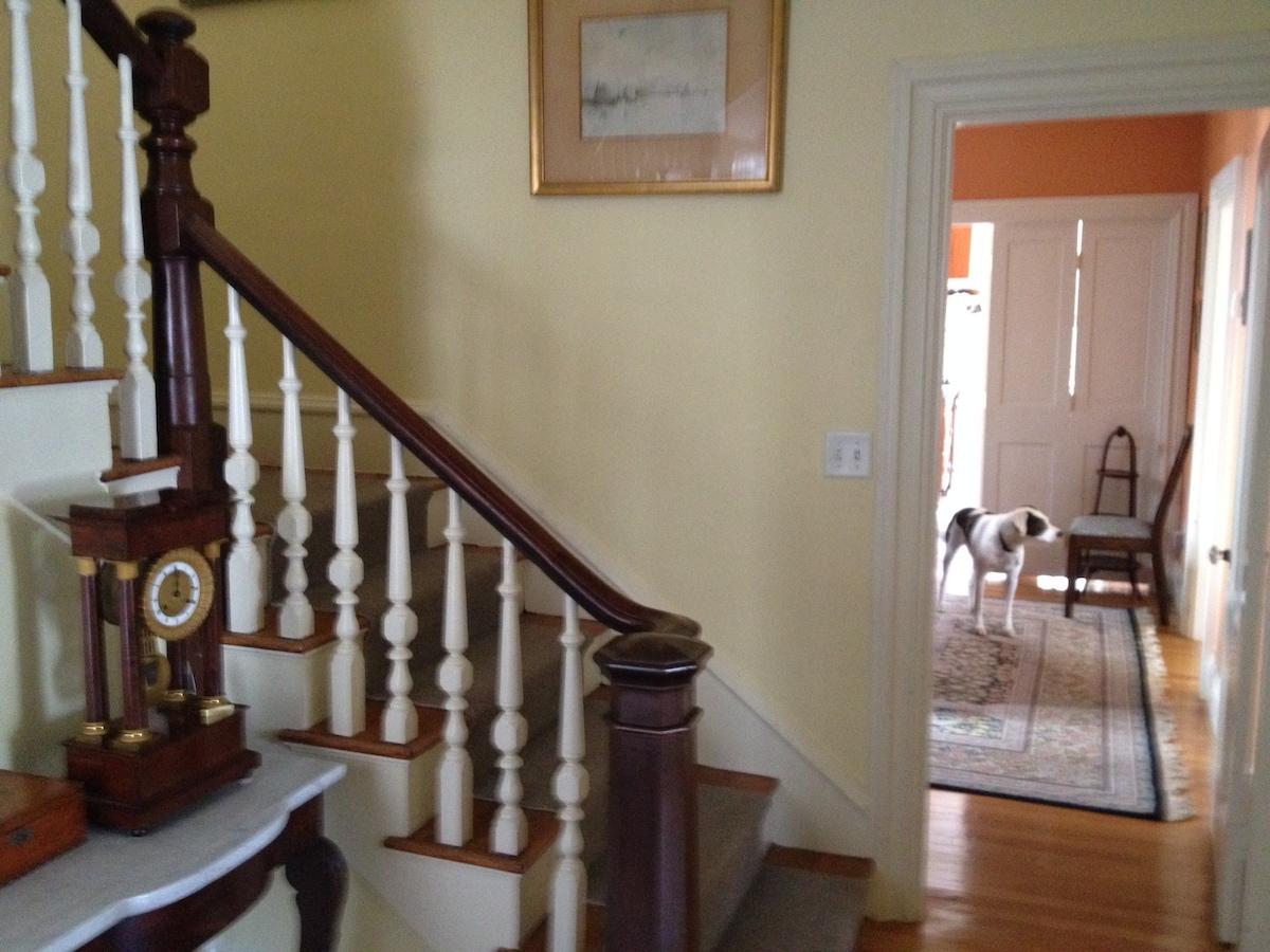 Private Room in House near Harvard
