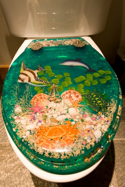 custom quirky toilet seat