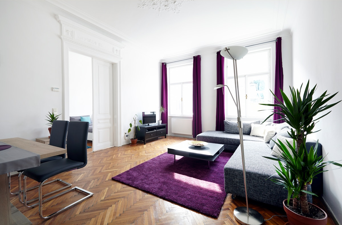 Apartment in the center of Vienna