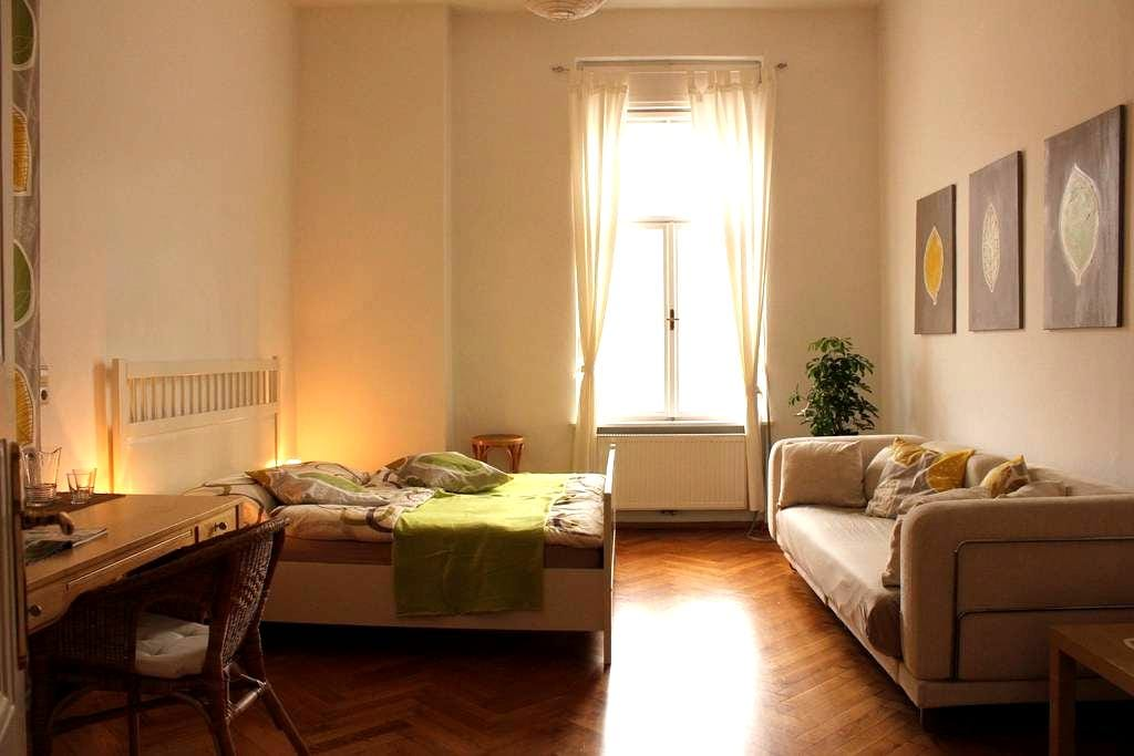 Stilvolles WG-Zimmer im Zentrum - Graz - Lägenhet