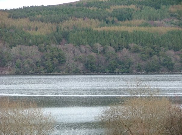 View from Cottage of Lake and surrounding hills and forrest.