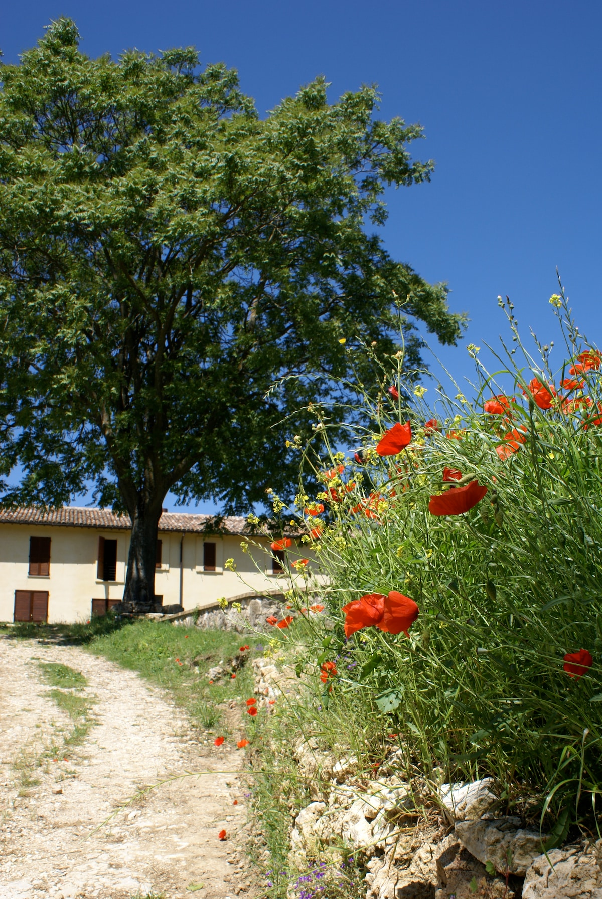 Enjoy your stay with us in Todi