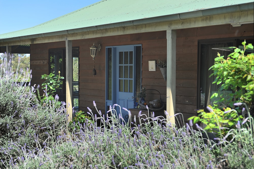 Lavender Farm house