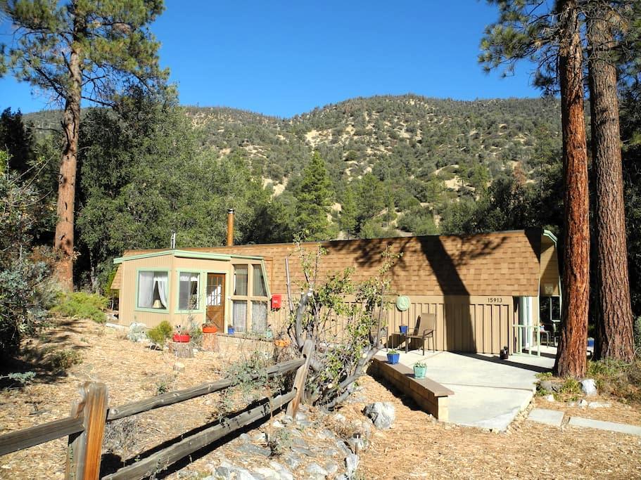 Cute, Romantic Cabin close to LA - Pine Mountain Club - Kisház