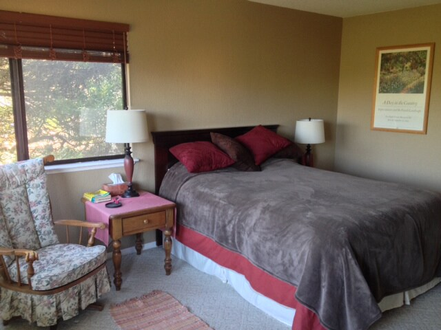 Large downstairs bedroom looks out onto lush backyard garden with exotic proteas.