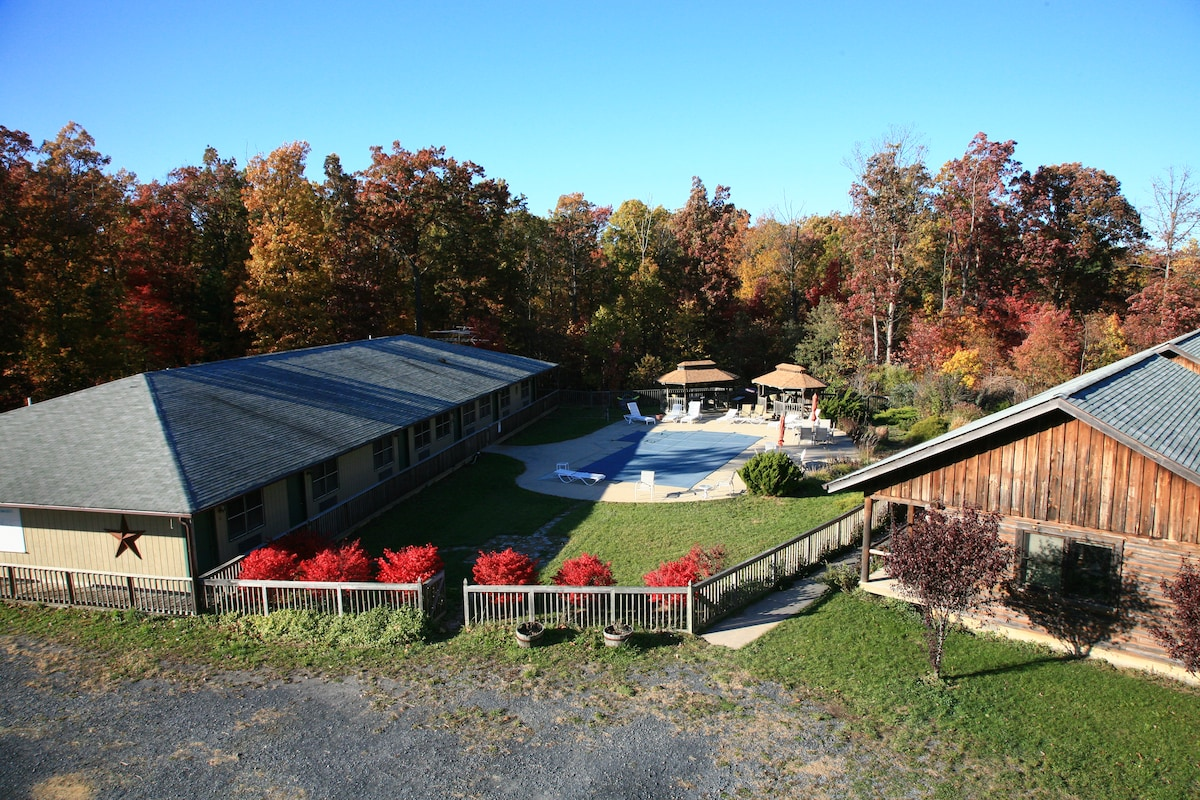 Lodge on left, cabins on right, pool and gazebos in between