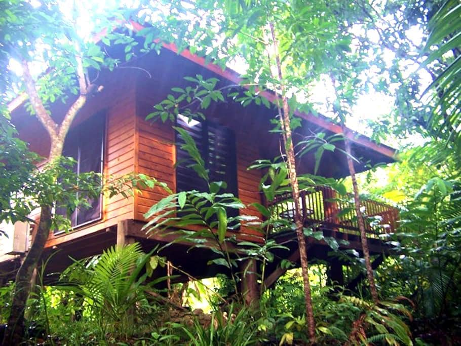 Wildwood cabin on exotic orchard - Cape Tribulation - Chalet