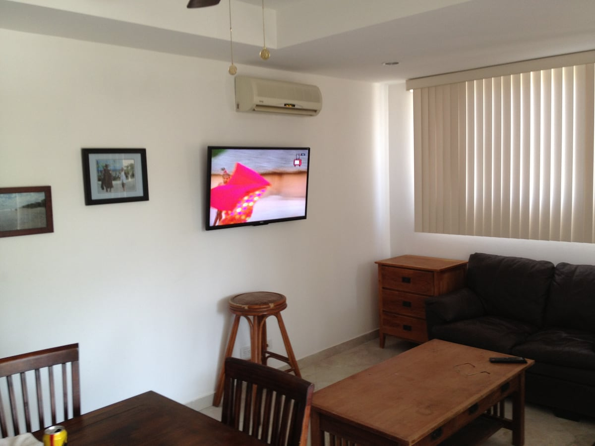 Wide screen TV, with wireless internet.