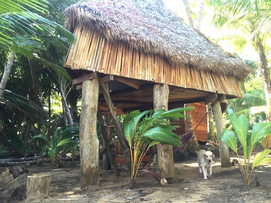 Cabaña Piramide. Ensueños. Little Corn Island - Corn Island