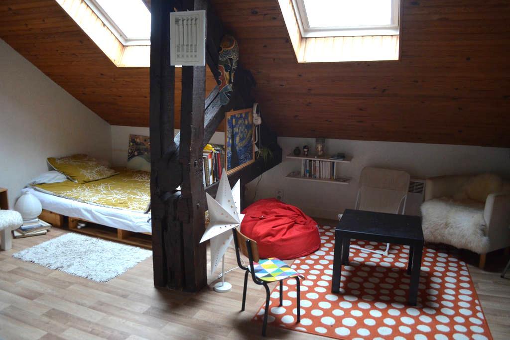 25m² au centre historique de Rennes - Rennes - Apartment