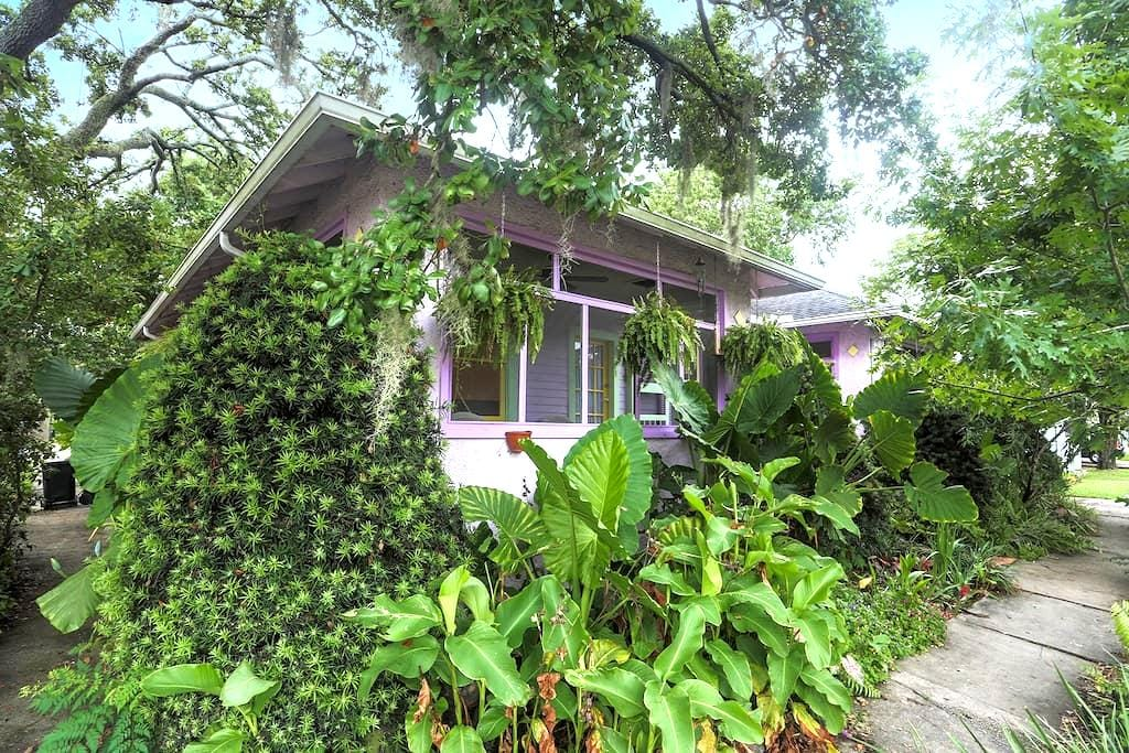 The Purple House by Tulane - New Orleans - Appartement