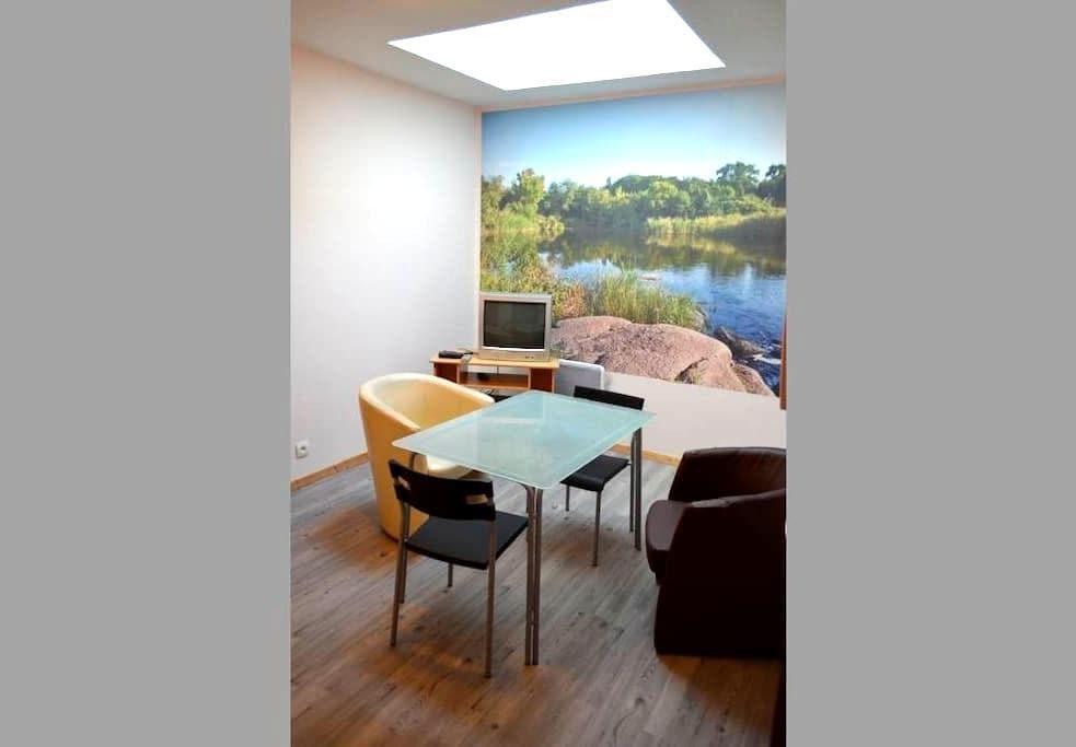 Appartement 24 m² à saujon - Saujon