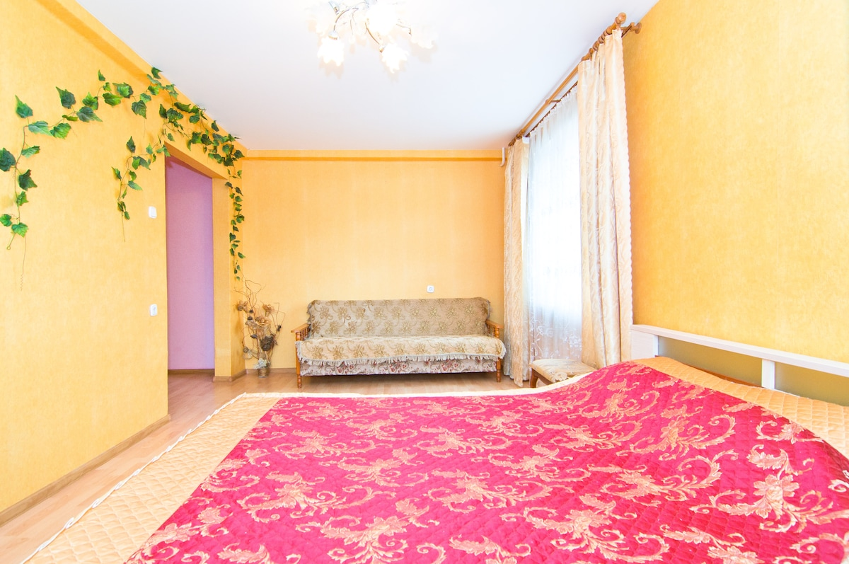 Comfortable flat for rent.WiFi, TV!